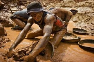 Four Illegal Miners Trapped To Death
