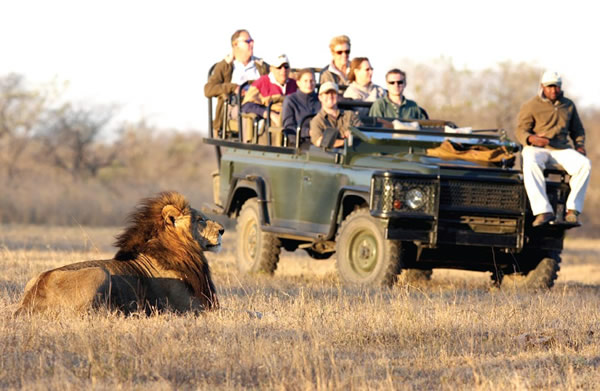 Why Millions Choose Africa As Their Safari Destination