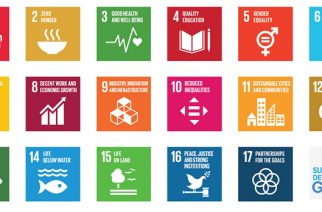 Ghana Stands The Risk Of Missing SDG 15 – World Bank
