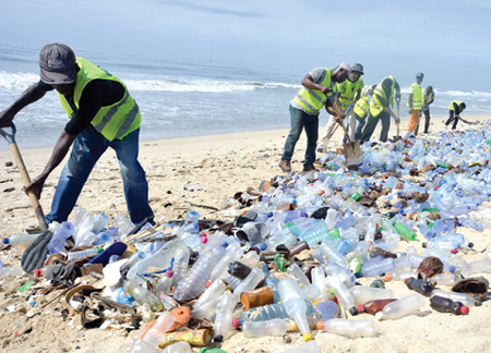 Harm Within Plastic Pollution