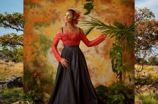 Editorial Two: Birds Of Paradise