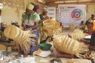 Basket weaving: A tradition that is paying off
