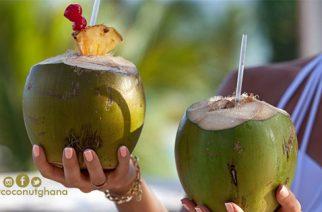 Ghana To Host Maiden International Coconut Festival