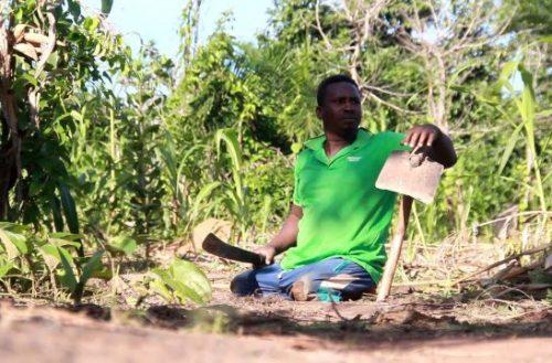 Kwasi Kumbepueru on his farm