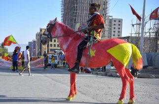 In northern Ethiopia's Mekelle city on Wednesday, a man rides a horse painted in the colours of the Tigray region's flag to mark the 45th anniversary of the launch of armed resistance against the-then Marxist regime... (GETTY IMAGES)
