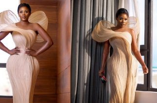Nana Akua Addo Storms Africa Magic Viewers Choice Awards With Gorgeous Dress