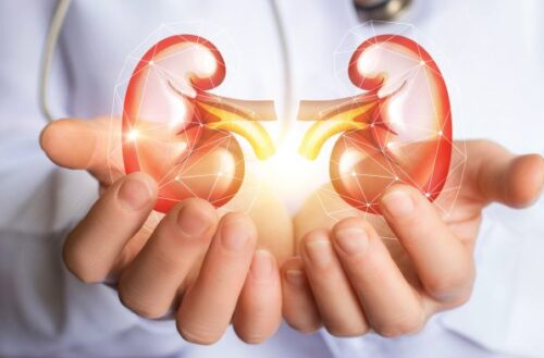 Kidney Health For Everyone Everywhere: Living Well With Kidney Disease