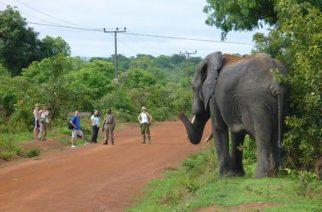 Tourism Ministry Starts Upgrading Tourist Sites
